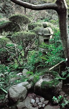 The garden of the Nezu Museum, Japan A relaxed, natural Japanese garden to be explored. With some classic features, it is unencumbered with religious symbolism.