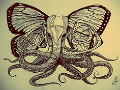 drawing vintage elephant Octopus elefante dibujo mariposa Pulpo buterfly juniordiaz juniordiazcotrino elefantemariposa elefantemariposapulpo pulpomariposa elefantepulpo