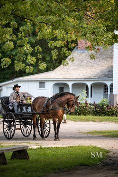 A horse pulls a cart at Upper Canada Village during Horse Lovers Weekend 2019 Horse Lover's Weekend at Upper Canada Village (in Morrisburg, Ontario)