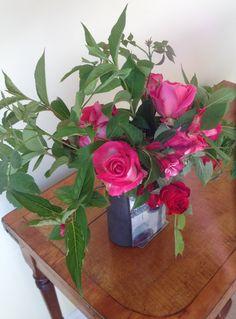 Gladys's roses  June 17