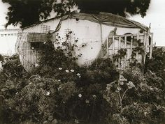 Home, (1993, printed 1994) by Robert Ashton :: The Collection :: Art Gallery NSW
