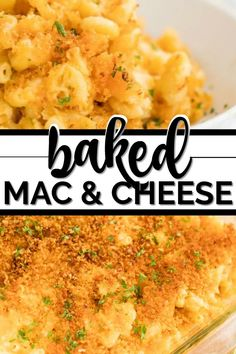 This authentic, southern baked mac and cheese been one of my all time favorite recipes. Nothing beats the crunch of the breaded topping blended perfectly with the creamy goodness of this recipe. Mac And Cheese Cupcakes, Baked Mac And Cheese Recipe, Mac And Cheese Homemade, Cheese Recipes, Potluck Recipes, Summer Recipes, Pasta Recipes, Macaroni Cheese, Macaroni Casserole