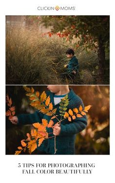 The colors of autumn are begging to be photographed! Use these five tips to help you capture the beautiful hues of fall with your camera. #fall #autumn #photography #clickinmoms