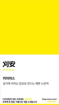 Pantone Colour Palettes, Pantone Color, Color Combinations, Color Schemes, Korean Colors, Colour Pallete, Colour Board, Color Stories, Color Swatches