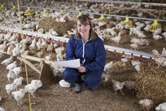 Did you know? Unlike other labelling schemes, RSPCA Assured is completely independent from the food and farming industries. Find out more: https://www.rspcaassured.org.uk/about-us/how-rspca-assured-works/