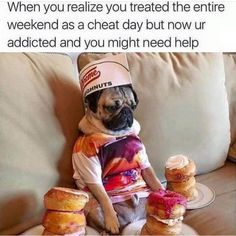 When you realize you treated the entire weekend like a cheat day but now you're . - When you realize you treated the entire weekend like a cheat day but now you're addicted and you - Gym Memes, Gym Humor, Workout Humor, Funny Memes, Funny Videos, Exercise Humor, Funny Workout, Workout Routines, Motivation Pictures