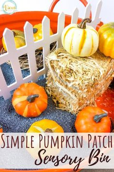 This pumpkin sensory bin resembles everything you would find at a real pumpkin patch. Kids can pick and count pumpkins, see farm animals, and more! Autumn Activities For Kids, Fun Activities To Do, Sensory Activities, Infant Activities, Diy Sensory Toys, Sensory Bins, Sensory Play, Sensory Table, Apple Theme