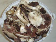Stuffed Mushrooms, Vegetables, Stuff Mushrooms, Vegetable Recipes, Veggie Food, Veggies