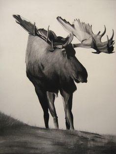 Samuel Jan, Moose, graphite framed, SOLD