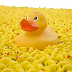 I don't know why but rubber ducks make me so happy!(: