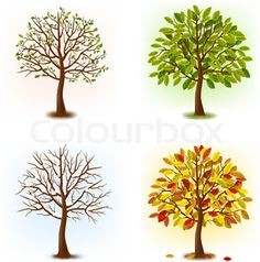 Vector of 'Four seasons - spring, summer, autumn, winter. Art tree beautiful for your design. Vector illustration.'