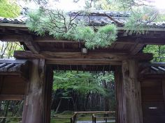 kotoin,The Temples of Kyoto