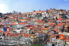 Oporto, Latest news
