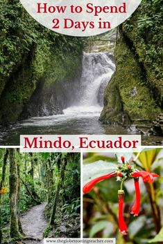How to Spend 2 Days in the Mindo Cloud Forest- There's more to Ecuador than the Galapagos. Eco-minded travelers will love the outdoor adventures, briding, and hiking in Mindo and the Ecuadorian cloud forest! Save time for Mindo in your Ecuador itinerary! Columbia South America, South America Map, Nature Photography Tips, Ocean Photography, Wedding Photography, Portrait Photography, Peru Travel, Travel Abroad, Mindo Ecuador