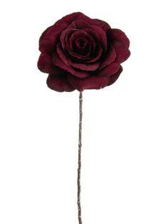 Harmony Rose - Burgundy