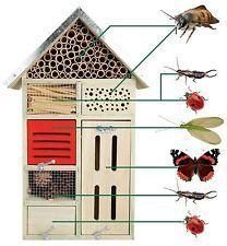 Esschert Design Insektenhotel L Nistkasten Nisthöhle x x cm NEU Slugs In Garden, Garden Bugs, Garden Insects, Garden Plants, Bug Hotel, Carpenter Bee Trap, Garden Projects, Diy Projects, Vegetable Garden Tips