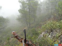 Monteando bajo la lluvia (2011).