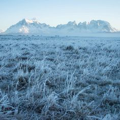 Frozen Torres del Paine on a #Winter morning. #Travel #ttot #Patagonia #Chile #Mountain #Landscape #Hiking