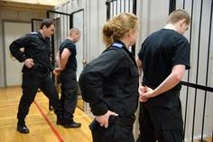 Correctional officers keeping the bad guys in.