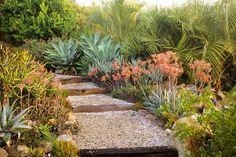 Southwestern Garden