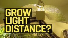 How far should your growlight be from your plants? Great question! J4G will give you the 411 on what scenario is best for you! Must watch! https://www.youtube.com/watch?v=lvH6KUEvMHk