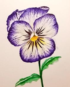 How to paint a Pansy with watercolour in a quick video. Original watercolour painting direct from the artist. This quick tutorial is ideal for inspiration. Original watercolour flower art now available also as a Fine Art Print.