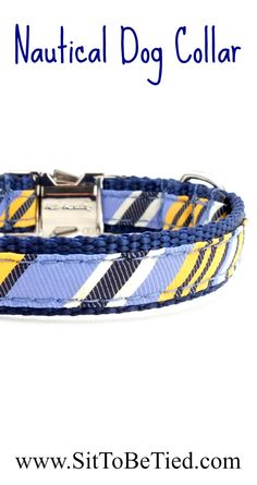 Nautical dog collar. A great summer dog collar for boy dogs. Blue and yellow stripes are a preppy dog collar