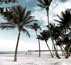 Bom diiiiia dia lindoooo! Bom diiiiia gente lindaaa!! Um dia incríiiiivel para todos nós! #rafinhagadelha #summer #beach