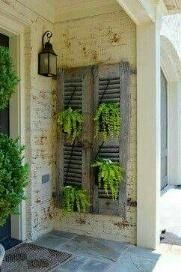 old shutters with ferns ~ great idea for backyard fence. old shutters. old shutters wit