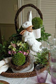 Bunny Fever!
