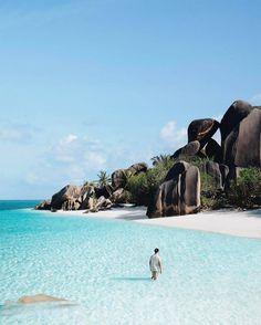 La Digue is an island in the Seychelles home to some of the most beautiful beaches imaginable! Photo by Explore. Inspire: Share with your Friends! Les Seychelles, Seychelles Islands, Seychelles Africa, Fiji Islands, Cook Islands, Beach Honeymoon Destinations, Top 10 Destinations, Honeymoon Ideas, Places Around The World