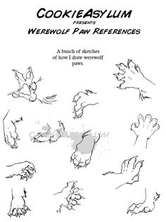An appealing fuck-ton of werewolf references. Werewolves are a tad simpler to define than aliens or natural deformities; virtually every werewolf is depicted as (obviously) a half human half wolf. In virtually every instance, the human grows larger,. Animal Sketches, Animal Drawings, Art Sketches, Art Drawings, Drawing Art, Anatomy Reference, Drawing Reference, Drawing Techniques, Drawing Tips