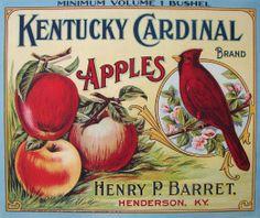 Western Australia Black Swan Bird Apple Fruit Crate Label Art Print
