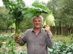Jelöltek   Az Év Agrárembere