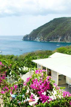 Location villa de luxe et vue mer - Baie de Deshaies