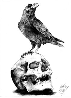 The Raven by Edgar Allan Poe by shuranegroYou can find Edgar allan poe and more on our website.The Raven by Edgar Allan Poe by shuranegro Fuchs Illustration, Edgar Allen Poe Tattoo, Edgar Allan Poe, Tattoo Drawings, Art Drawings, Rabe Tattoo, Totenkopf Tattoos, Raven Art, Skull Art
