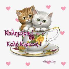 Καλημέρα σε όλους και καλή Κυριακή με Εικόνες Τοπ.! - eikones top Pictures