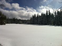 Fresh Snow in Page Meadows