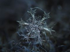 amazing close-up Snowflakes - taken by homemade camera Imgur