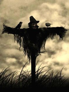 Halloween - Origin, History and Facts: How to Make a Scarecrow. I think I'd rather make mine more scary like this image here. A skull (glued on a styrofoam head perhaps?), shredded black bags on a T-frame, a couple of birds and a hat. Make A Scarecrow, Halloween Scarecrow, Holidays Halloween, Scary Halloween, Vintage Halloween, Happy Halloween, Halloween Decorations, Scarecrow Tattoo, Scarecrow Ideas