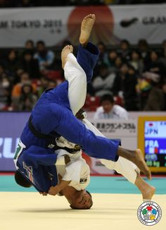 World Martial Art JUDO