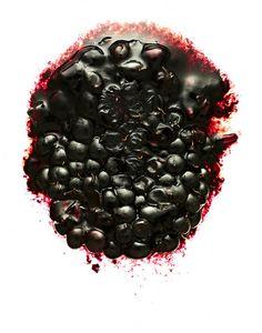 smashed food stock images from Offset. Blackberry, Fish, Fruit, Illustration, Pisces, Blackberries, Illustrations, Rich Brunette
