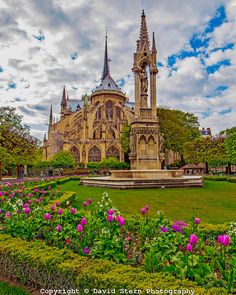 Notre Dame Cathedral #1, Paris | David Stern Photography