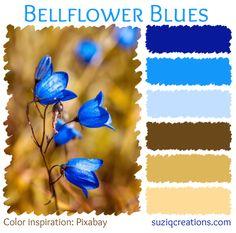 Bellflower Blues Color Palette