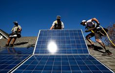 David Tepper's Appaloosa Management LP said it will ask a judge to set an expedited trial in Delaware in its dispute with SunEdison Inc. over the utility's $1.9 billion planned acquisition of residential solar-power provider Vivint Solar Inc.