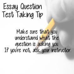 essay about test taking