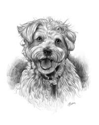 Pencil Sketch Your Pet as Art From a Photo - Examples with Pets - Dog http://www.giveamasterpiece.com/eshop/10expand-pencilsketch.asp