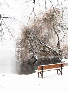 Start Of Winter, Long Winter, Winter Fun, Winter Snow, Winter Time, Seasons Of The Year, Months In A Year, La Reverie, Winter's Tale