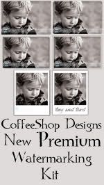 The CoffeeShop Blog: Loading Actions into Photoshop Elements