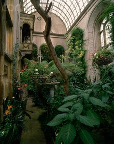 Here is the inside of Flintham Hall's conservatory, note the Juliet Balcony going to the second floor library! Dome Greenhouse, Outdoor Greenhouse, Cheap Greenhouse, Greenhouse Wedding, Greenhouse Ideas, Indoor Garden, Indoor Plants, Porches, Homemade Greenhouse